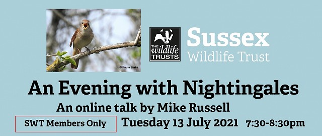 An Evening with Nightingales - Members only (13/07/21)