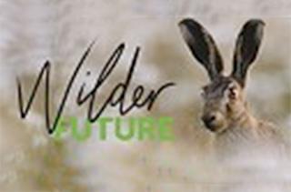 Wilder Future