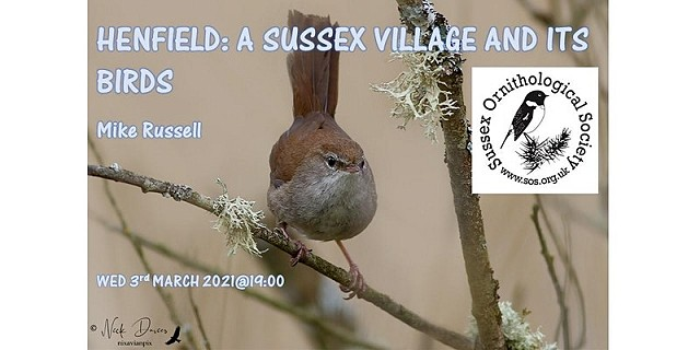Henfield: A Village and its birds