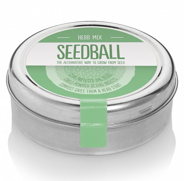 Wildflower Seedball tin - Edible Herb Mix