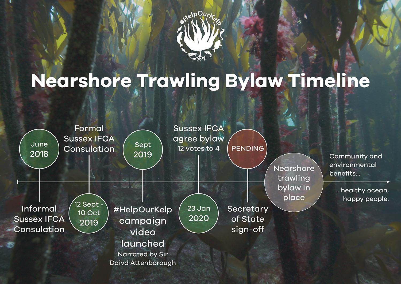 HOK Bylaw Timeline web