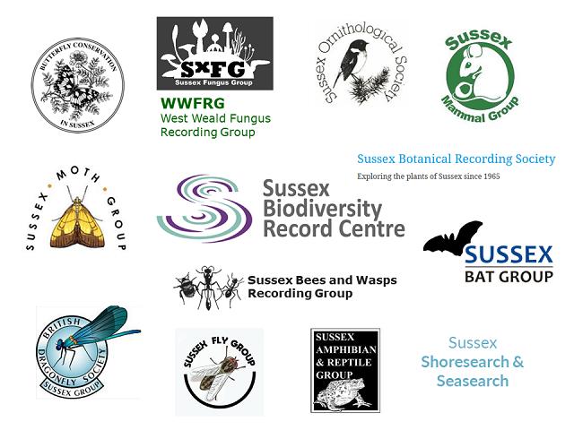 Making Nature Count SWT webinar April 2021