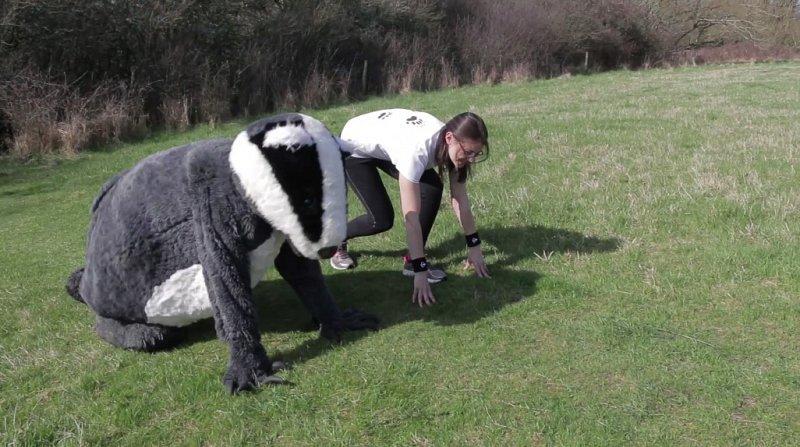 Training for the Brighton Marathon