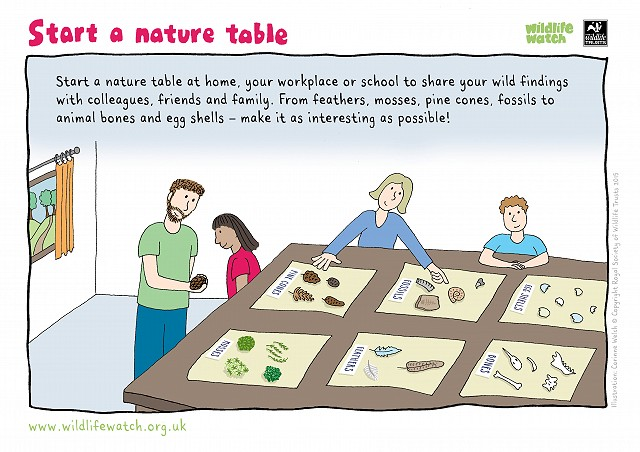 Nature tablE 800