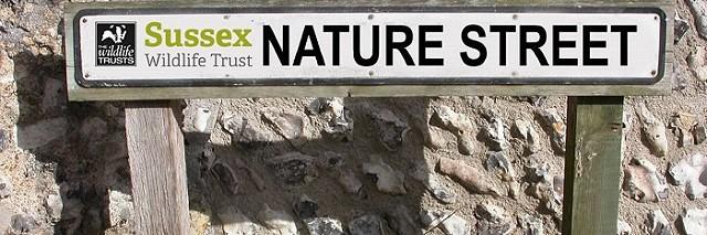 NatureStreet