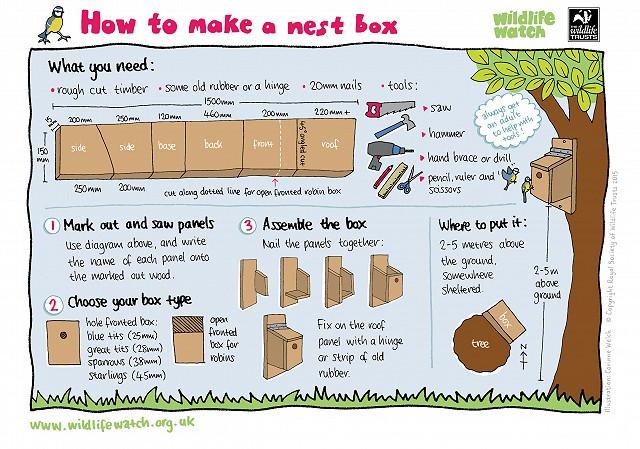 NEST BOX 0