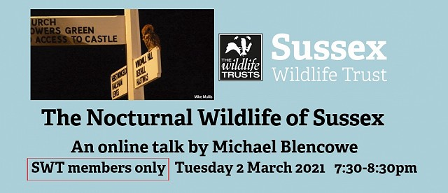 The Nocturnal Wildlife of Sussex - Members Only