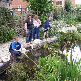 school pond