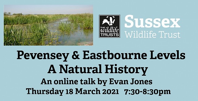 Pevensey & Eastbourne Levels: A Natural History