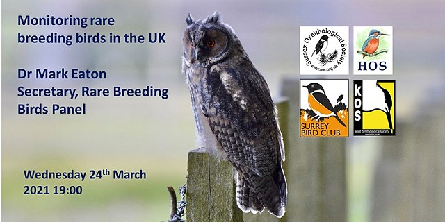The UK Rare Breeding Birds Panel
