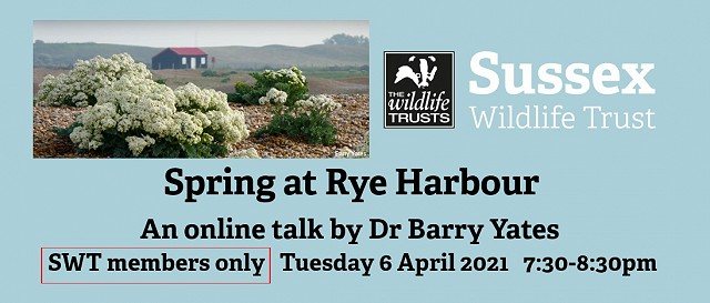 Spring at Rye Harbour - Members Only