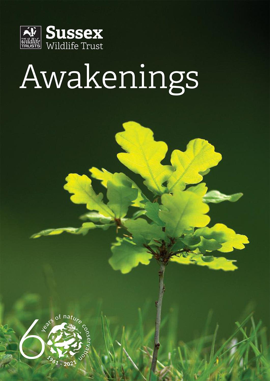 SWT Awakenings A4 1