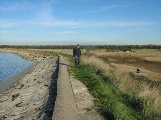 Man made flood embankments at Thorney Island now protect wetland which is below sea level