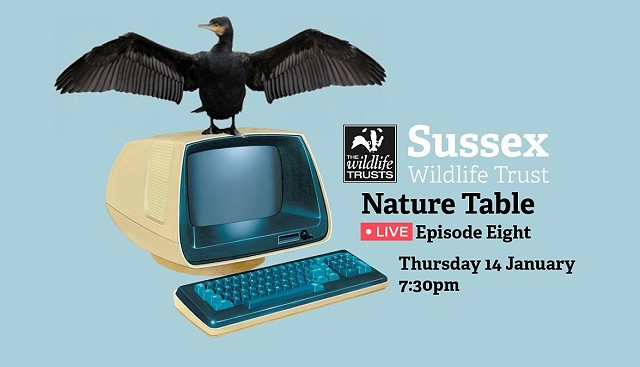 Nature Table Live episode 8 (14/01/21)