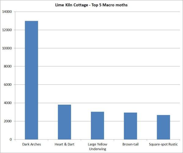 Top 5 macros