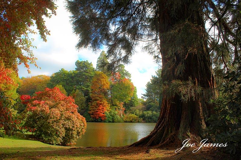 Websize colours of autumn (c) joe james