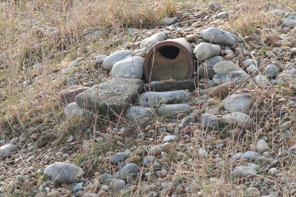 Wheatear nestbox 4096