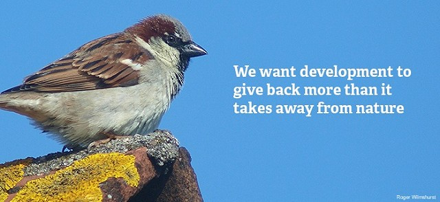 Wilder Sussex we want sparrow