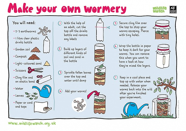 Wormery(1)